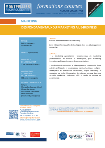 Fondamentaux du marketing a e-business