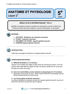 anatomie et physiologie - Teaching Sexual Health