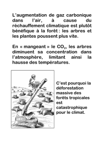 L`augmentation de gaz carbonique dans l`air, à cause du
