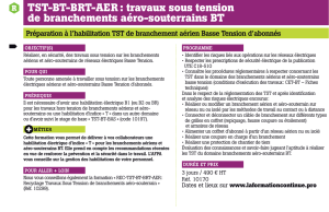 TST-BT-BRT-AER : travaux sous tension de