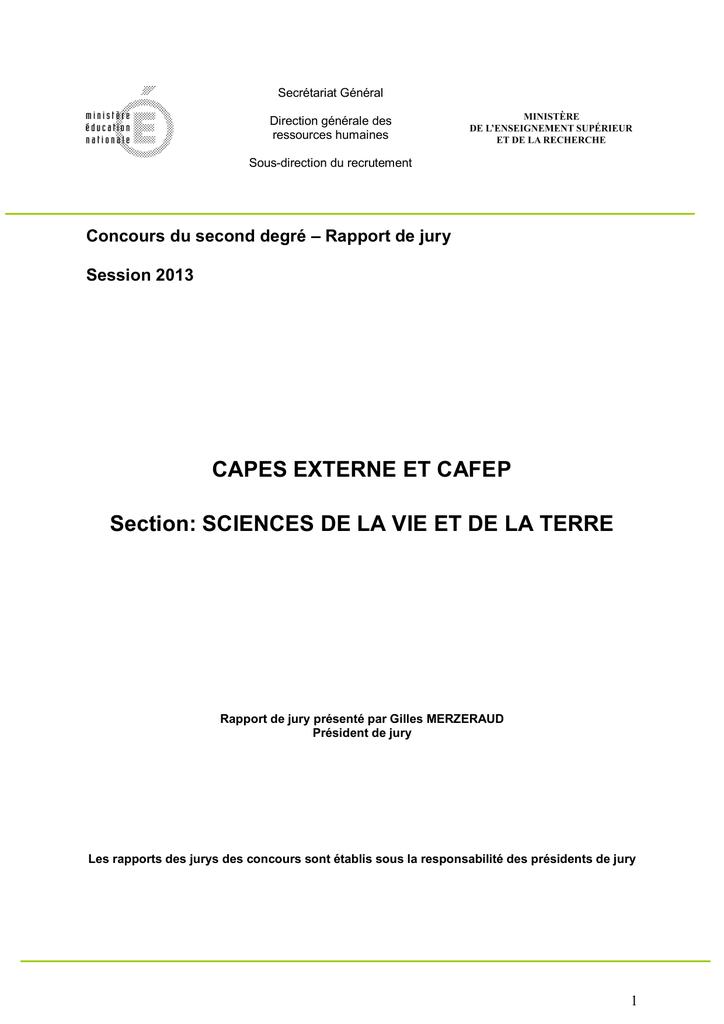 """Serie de 6 Capsules Champagne Générique /"""" Les Bulles /"""" Ref 1056"""
