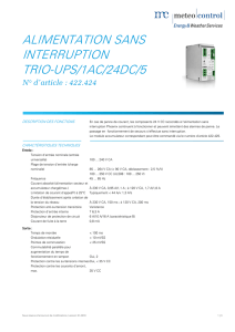 ALIMENTATION SANS INTERRUPTION TRIO