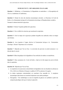 FICHE DE TD N°2 : METABOLISME CELLULAIRE Question 1