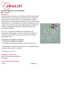 Kit PCR - Diagnostic microbiologique Ref : 117116 Descriptif