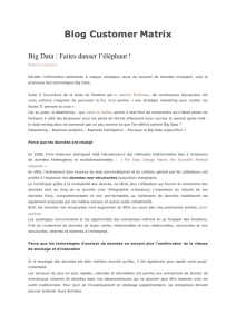 Big Data - Parisianavores