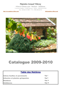 Catalogue A4 internet 2009