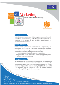 Flyer DES Marketing P1.ai