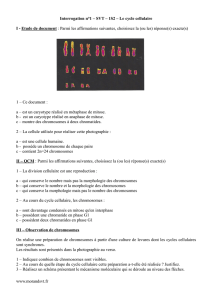 Interrogation n°1 – SVT – 1S2 – Le cycle cellulaire I