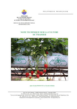 Note technique Fraise - service du developement rural