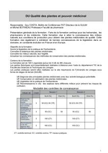 G/én/érique Si/ège Dauto pour Chien Lit de Transport pour Animaux de Compagnie avec Poches de Rangement Si/ège Rehausseur Antid/érapant pour Chien