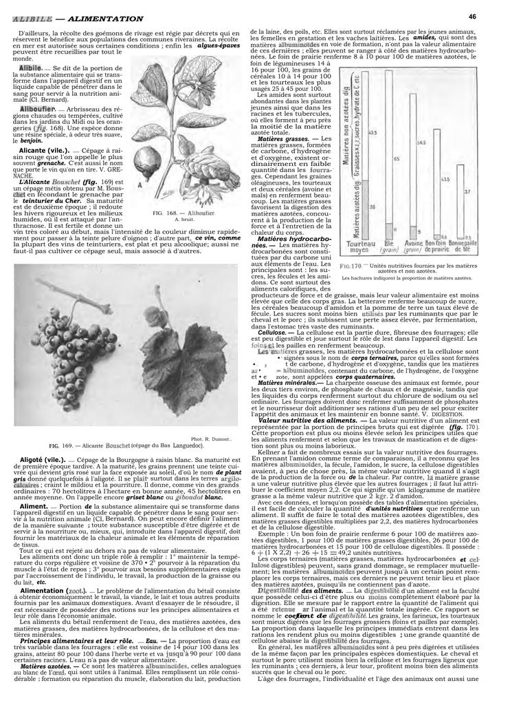 5 ensemble de poudre doxyde de c/érium+4 PCS Meules de polissage en feutre de laine