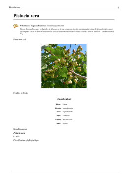 Pistacia vera - doc-developpement