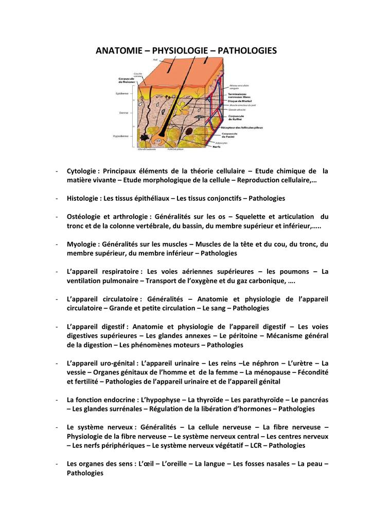 Fantastisch Anatomie Labortest Zeitgenössisch - Menschliche Anatomie ...