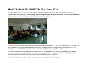 PLANTES SAUVAGES COMESTIBLES – 22 mai 2016