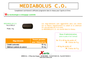 mediabolus co