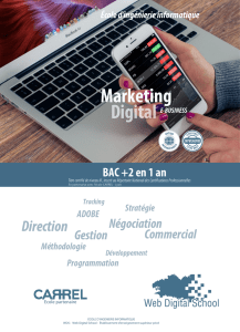 Marketing - Web Digital School