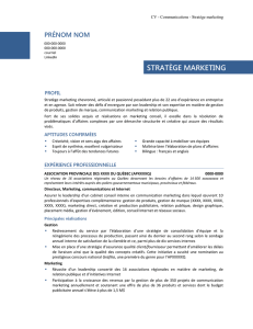 Stratège marketing - André Filion et Associés