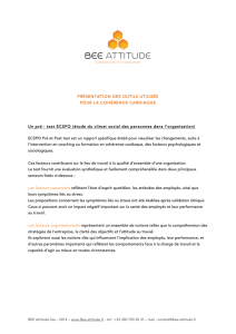 test ECSPO - Bee-attitude-coaching personnel