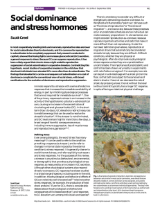 Social dominance and stress hormones