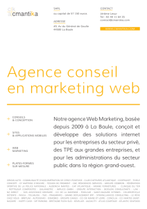 Agence conseil en marketing web
