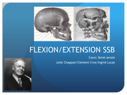 flexion/extension ssb