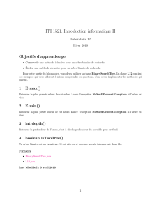ITI 1521. Introduction informatique II