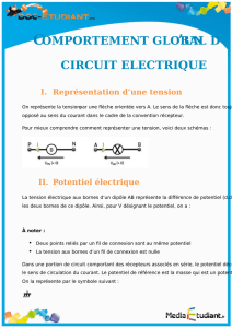 comportement global d circuit electrique
