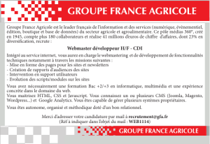 Un Chef de Publicité junior H/F