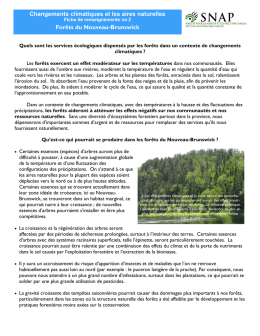 Climate Change 2 - Forests french