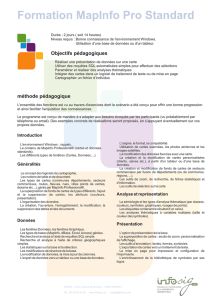 Programme formation MapInfo initiation