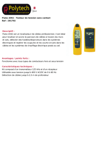 Fluke 2042 - Testeur de tension sans contact Ref : 291792
