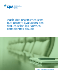Audit des organismes sans but lucratif : Évaluation