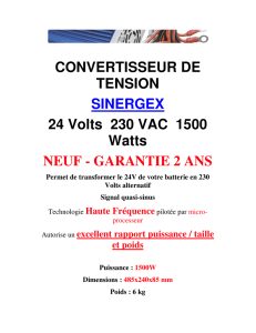 CONVERTISSEUR DE TENSION SINERGEX 24 Volts 230 VAC