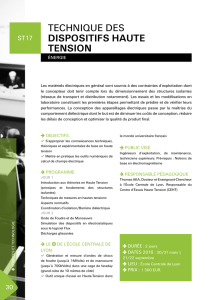 TECHNIQUE DES DISPOSITIFS HAUTE TENSION PO AT