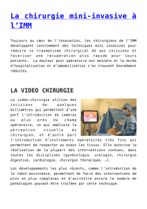 La chirurgie mini-invasive à l`IMM