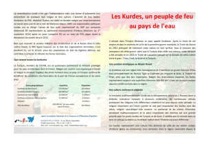 Flyer Kurdistan (PDF-Version