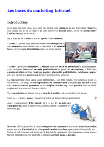 Les bases du marketing Internet pdf Les bases du marketing Internet
