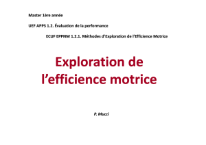 Exploration de l`efficience motrice