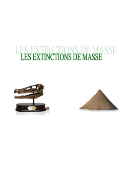 extinctions massives - Plateforme blogs RPN