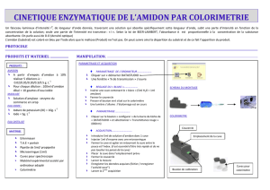 ds_cinetique enzymatique par colorimetrie