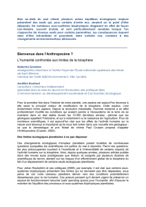 version pdf de l`article