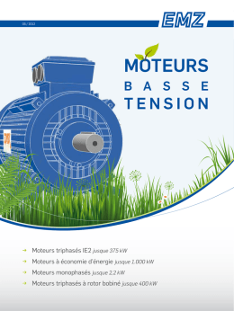EMK Catalogue moteurs basse tension IE2
