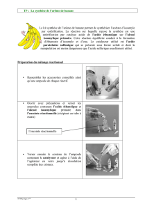 la synthese de l`arome de banane le kit synthese de l`arome