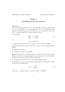 Feuille 4 Conditionnement des matrices