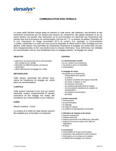 Versalys Formation Juillet 07 COMMUNICATION NON VERBALE