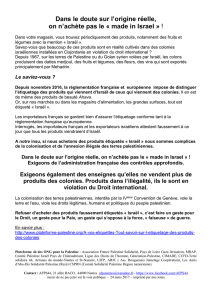 tract - Association France Palestine Solidarité