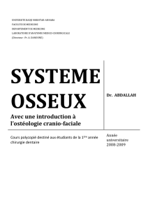 SYSTEME OSSEUX