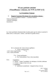 G/én/érique Bas autofixants noir /à jarreti/ères dentelle 20 deniers