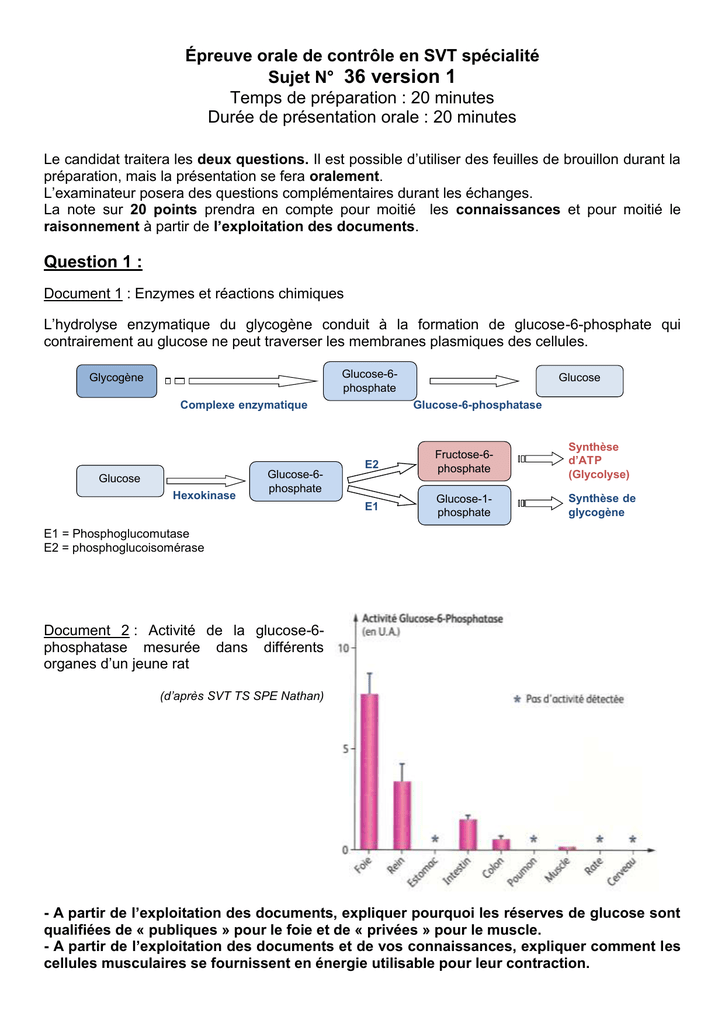 sujet spe 36 v1 - svt - académie de strasbourg