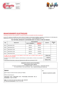 branchements electriques - application